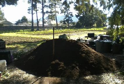New compost and manure!