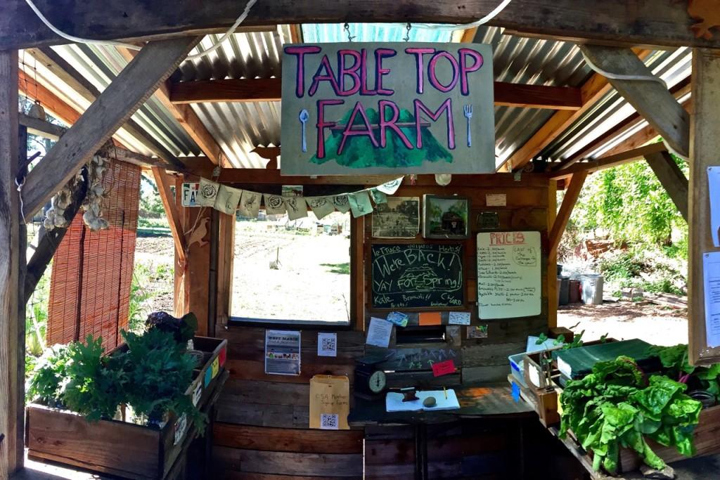 Farm Stand 2015