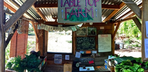 The Farm Stands are always open
